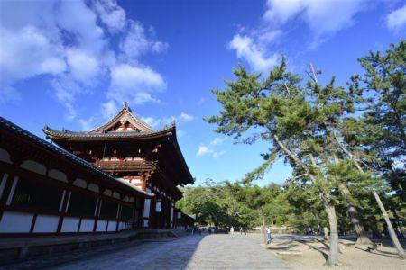 Bình yên trước cổng chùa